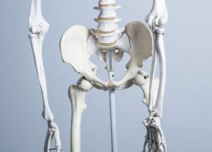 骨盤のゆがみからくる腰やその周りの痛みやしびれなどの不調